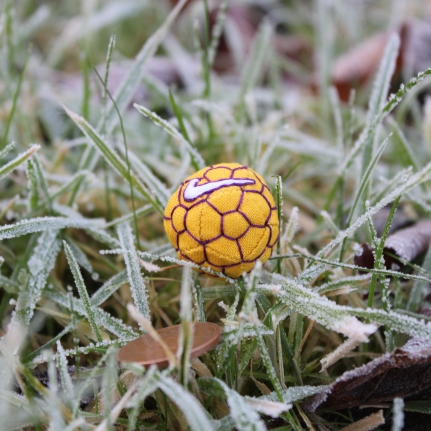 Quilted football