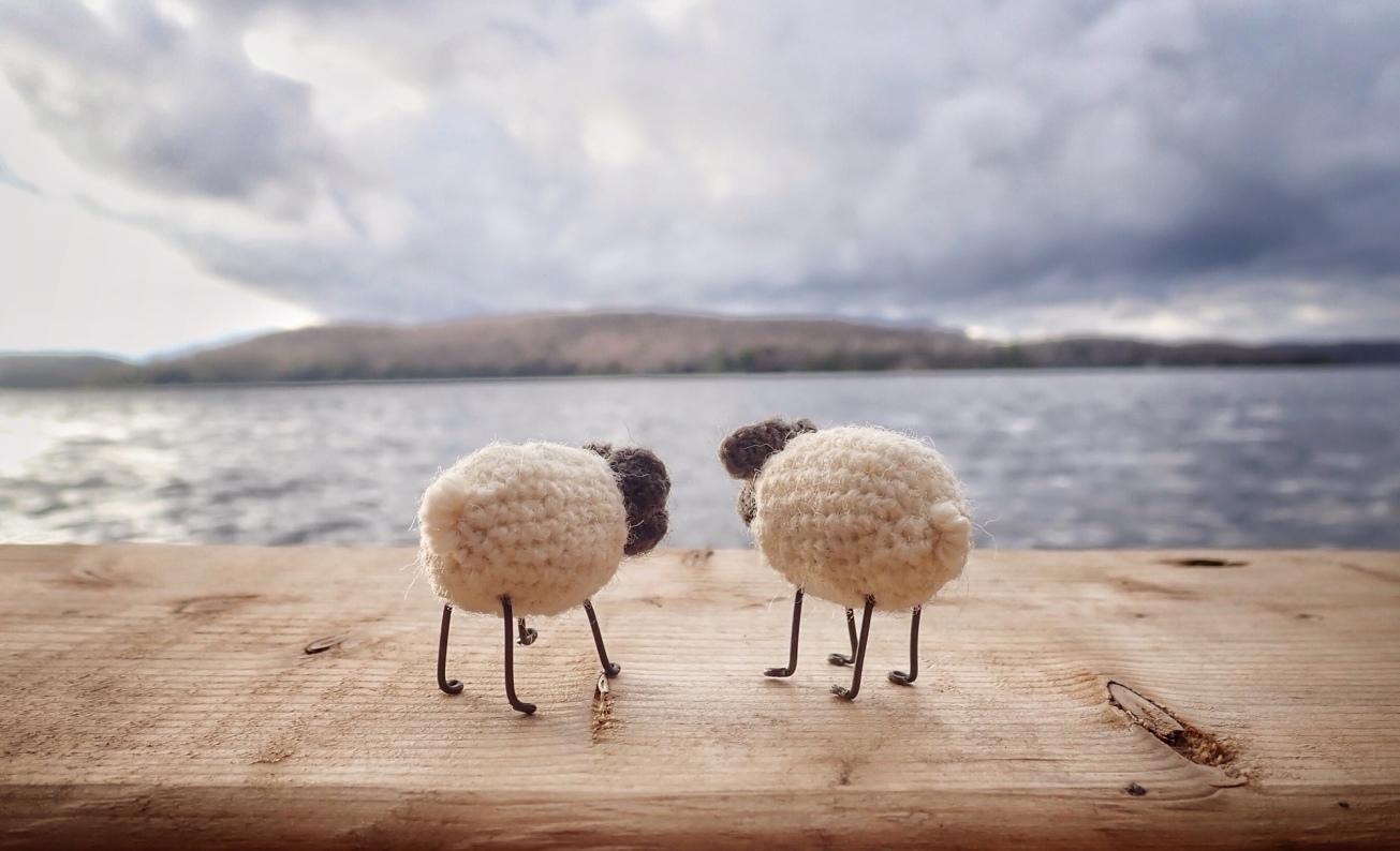 crochet sheep overlooking lake